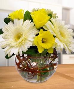 Daffodils & Daisies