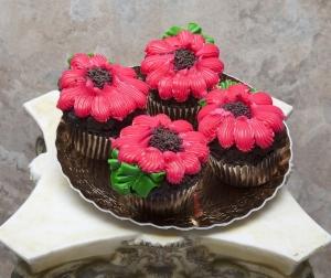 zoom_CupcakeAsst13081771450