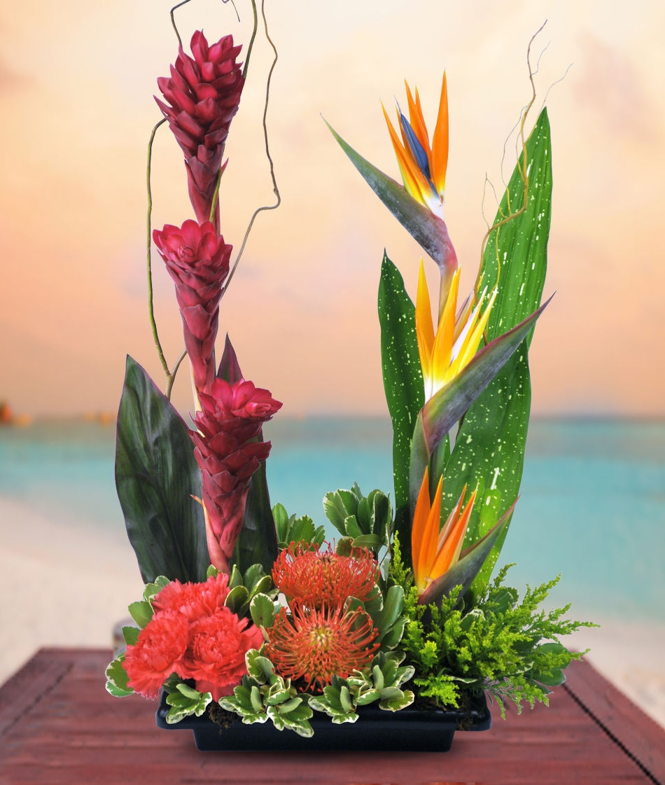 Long beach florist allens flower market long beach page 4 the best selection of tropical flowers izmirmasajfo